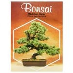 Seeds - www.bonsai.de